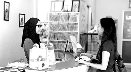Client interacting with veterinary clinic staff